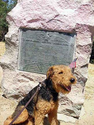 Bogart on Memorial Day