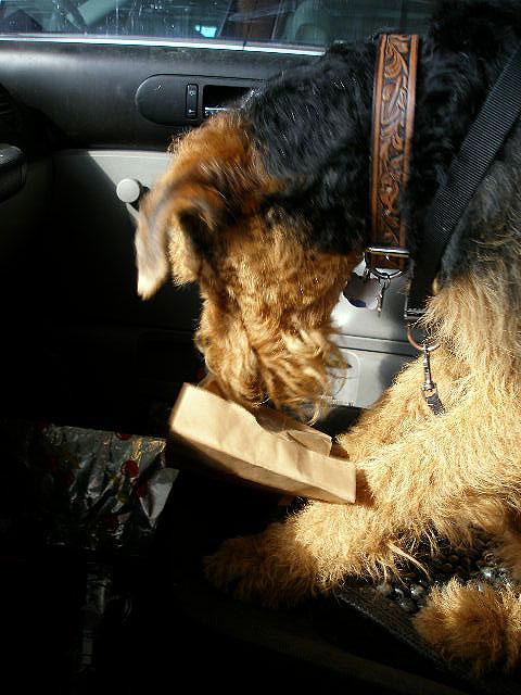 Bogie in the Car