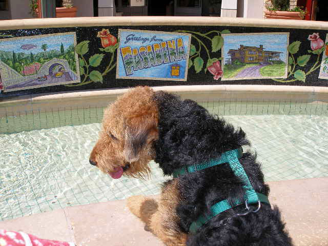 Bogart in Pasadena