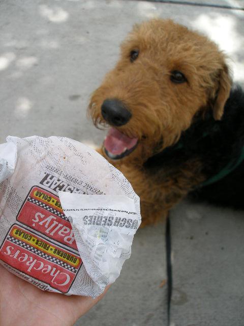 Bogart's Birthday Burger