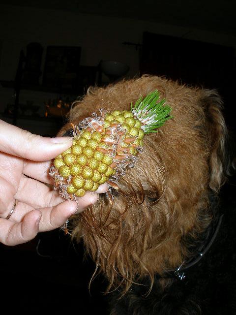 Pineapple Cone