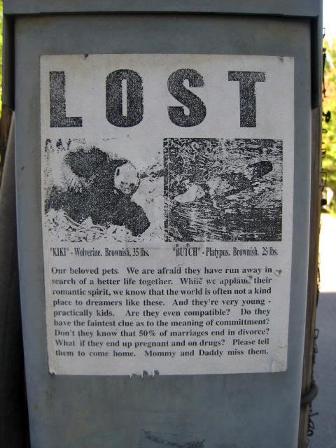 lostsign