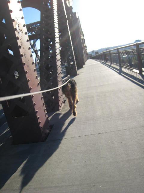 sunwalk29